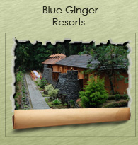 Blue Ginger Resort