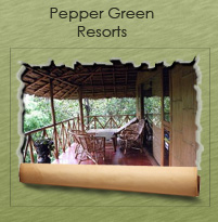 Pepper garden Resorts